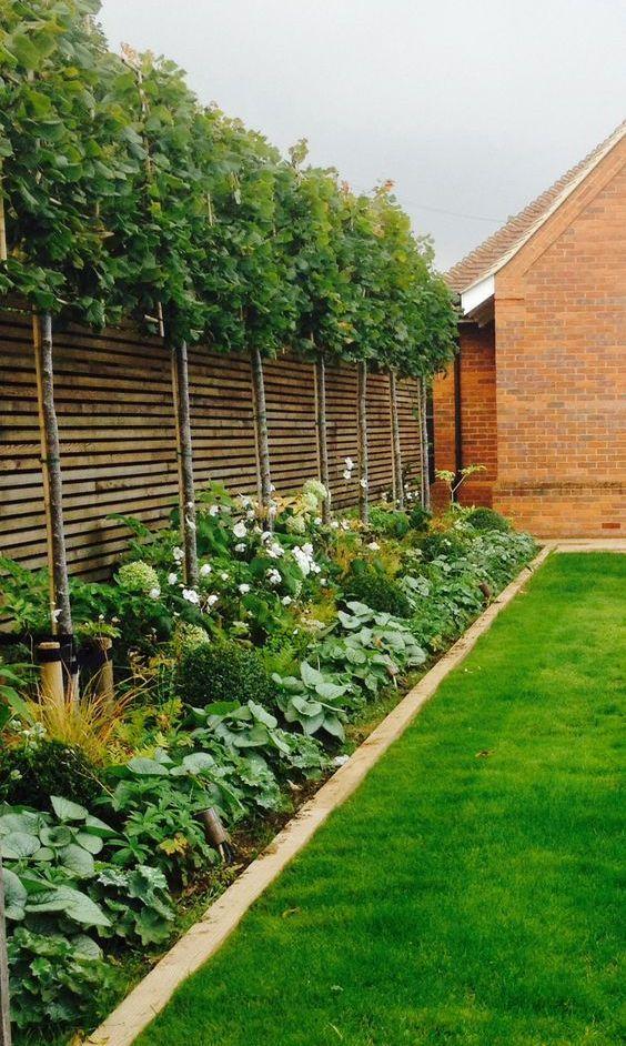 Tuin planten border ideeën