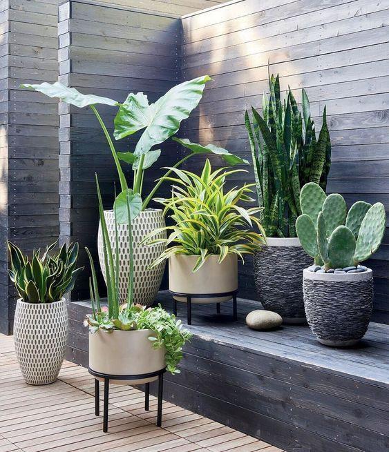 Tuin plantenpot ideeën