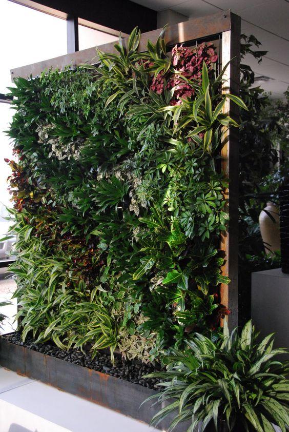 Tuin plantenwand