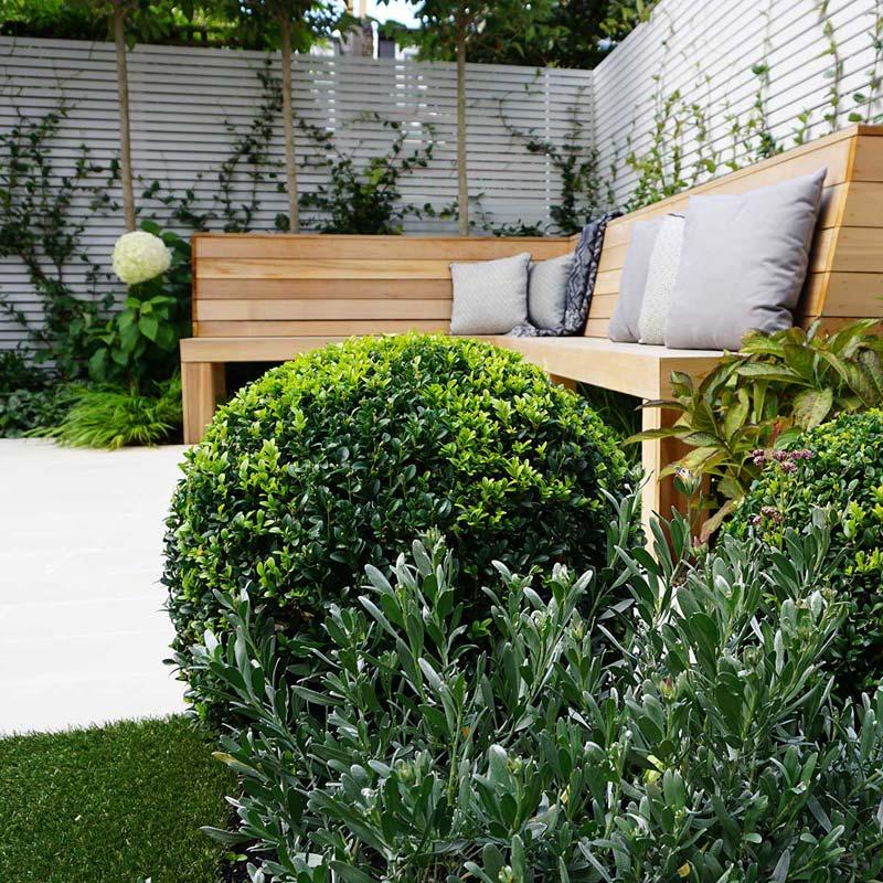 tuin voorbeelden moderne tuin planten