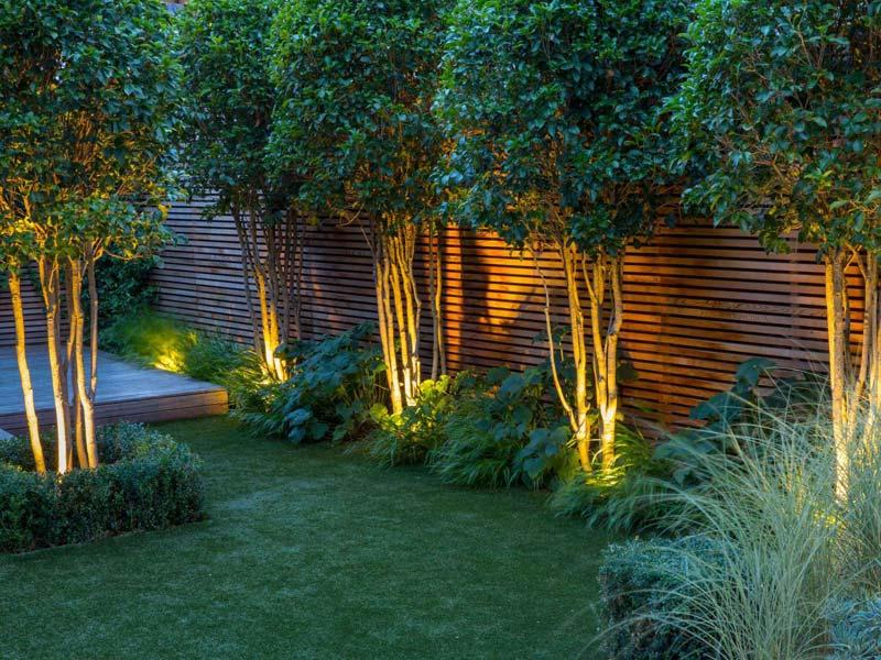 tuin voorbeelden sfeervolle tuinverlichting bomen