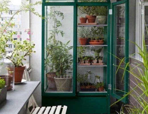 Tuinieren op het balkon