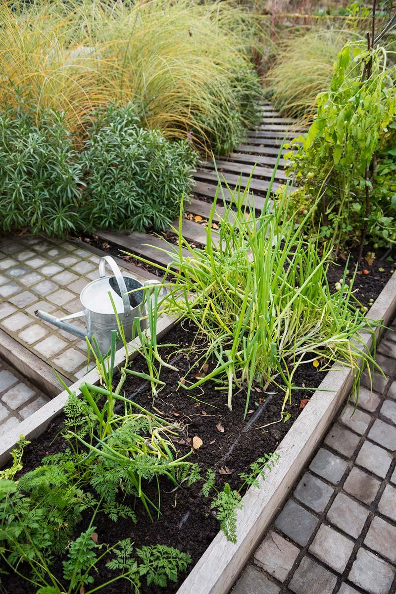 tuinvoorbeelden moestuin houten plantenbak