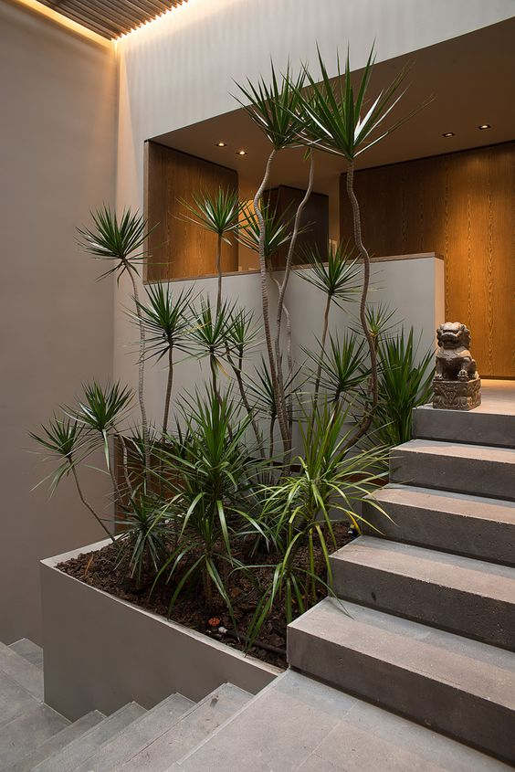 Vaste plantenbak in huis