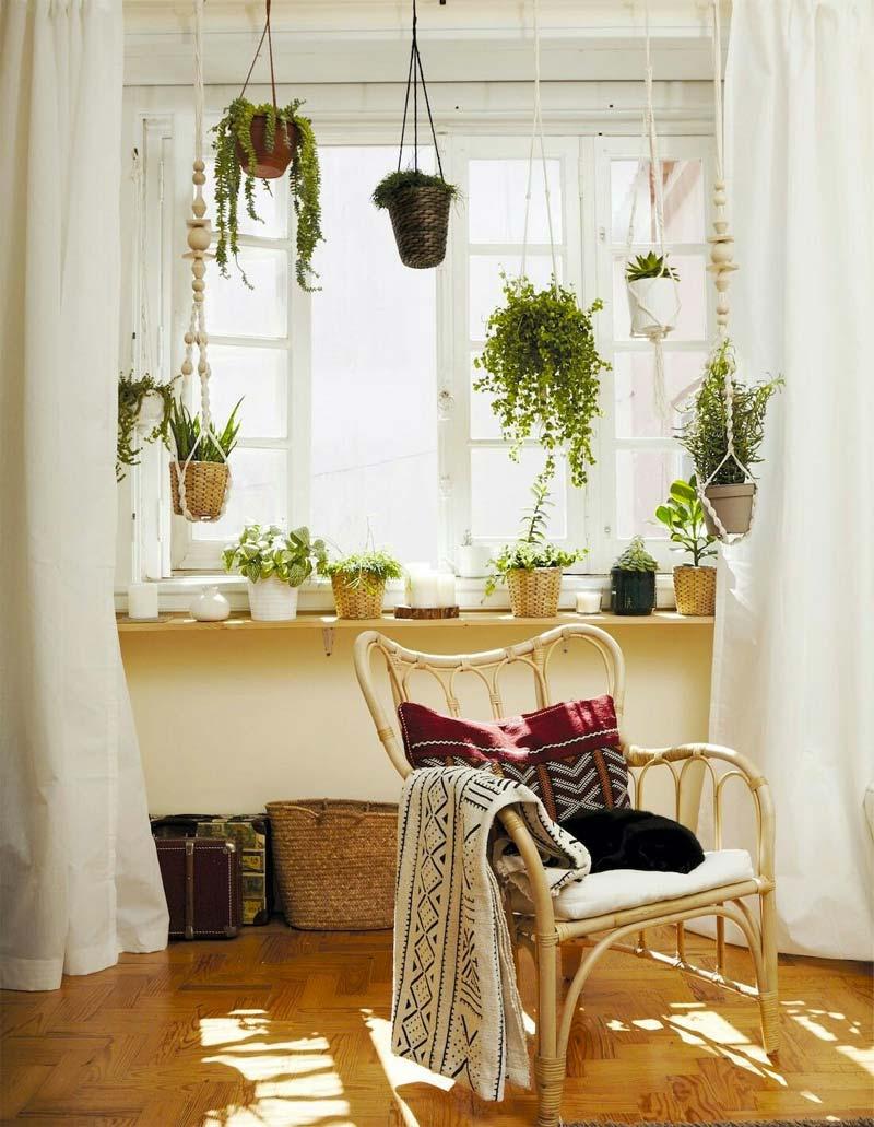 vensterbank decoratie planten hangplanten