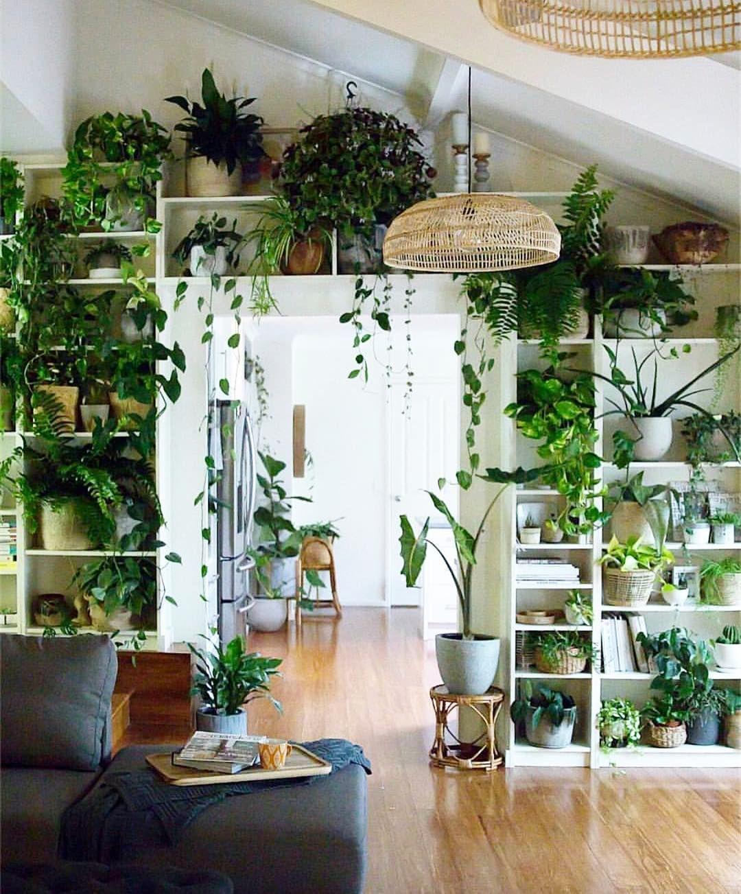 Verticaal tuinieren met een boekenkast