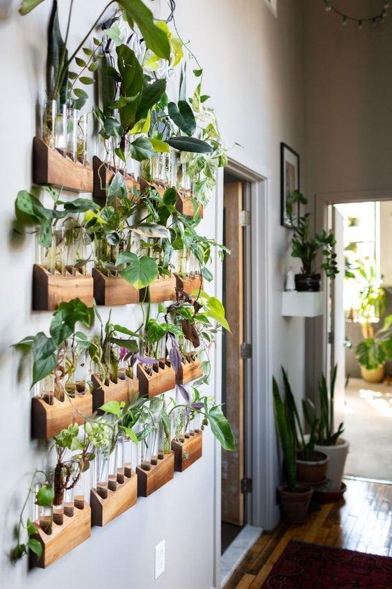 Verticaal tuinieren met reageerbuisjes