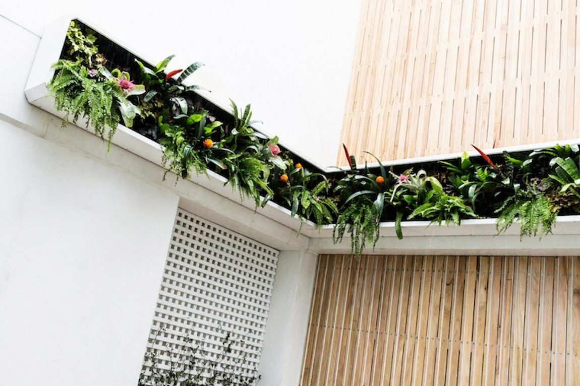 verticale-plantenbak-tuin