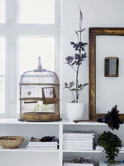 Vogelkooi in huis