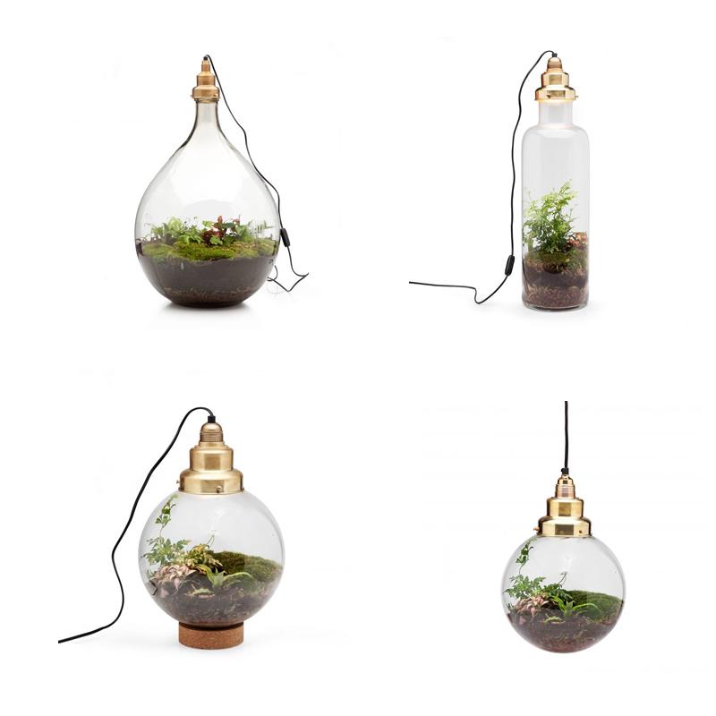 woonkamer ideeën spruitje terrarium