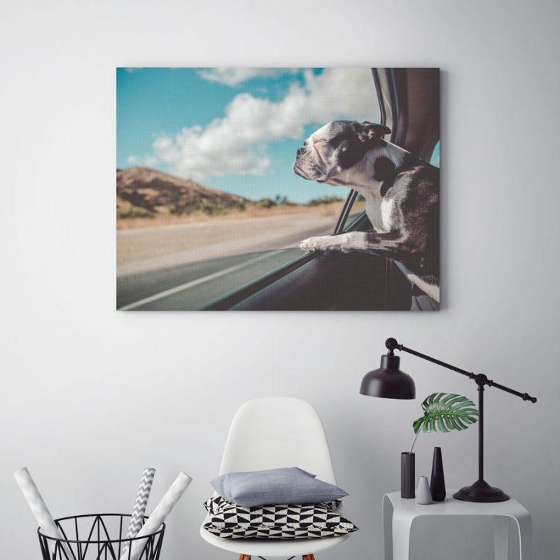 Zomer 2018 – De beste tijd voor je eerste canvasafdruk